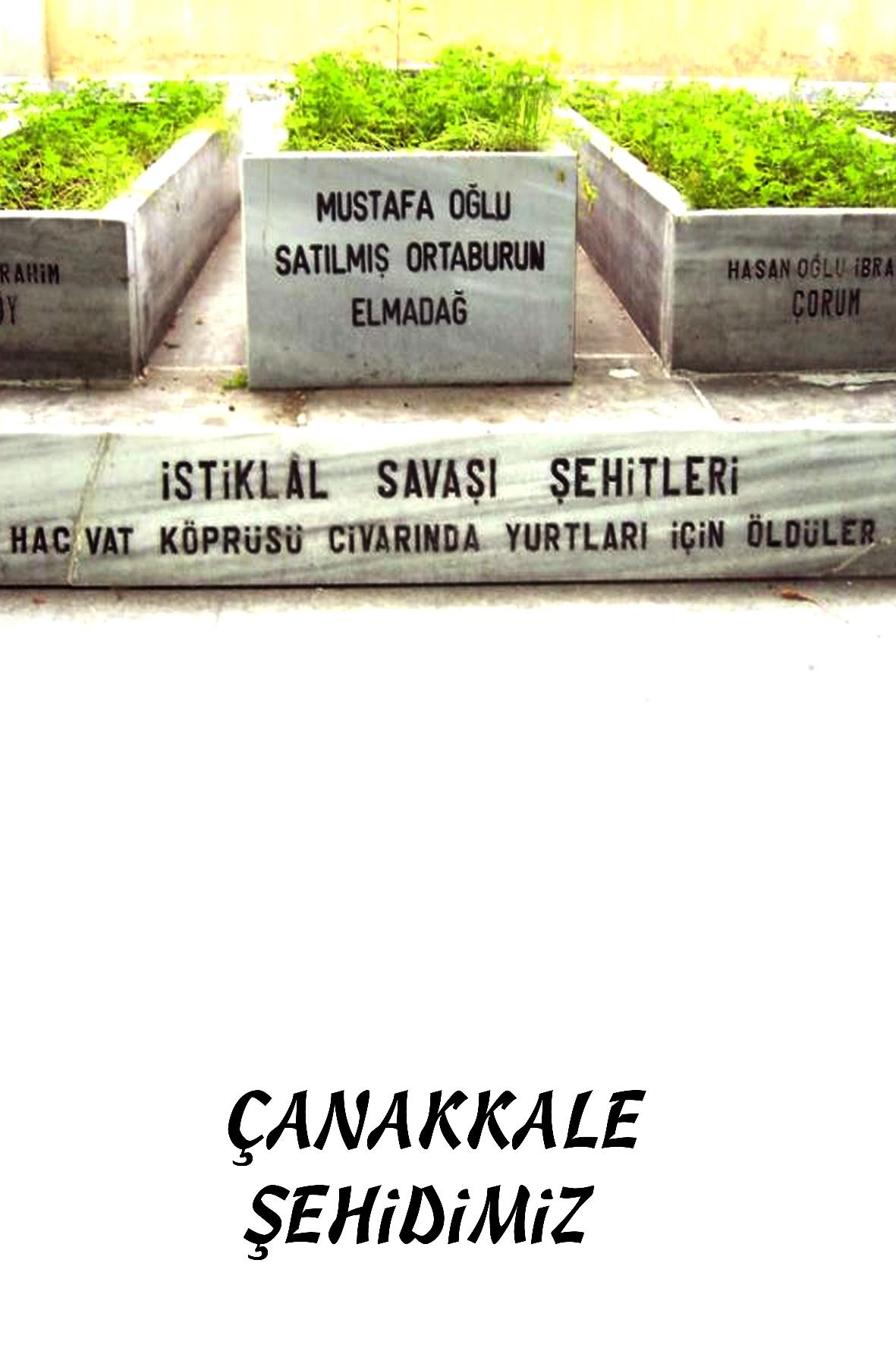 MUSTAFA OĞLU SATILMIŞ ORTABURUN